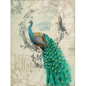 Decorating a peacock bathroom | http://bathroom-decorating.info
