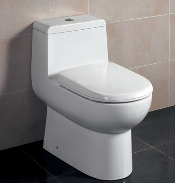How to replace an inefficient toilet